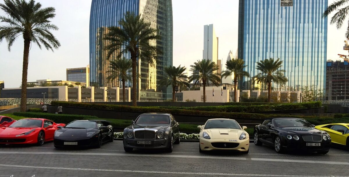 Points to Consider Before Renting a Car in Dubai - digitalgarden